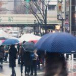 【ブランド品】急な雨で濡れちゃった!革製品のメンテナンス法